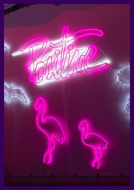 Светящиеся фигуры фламинго и надпись с подсветкой