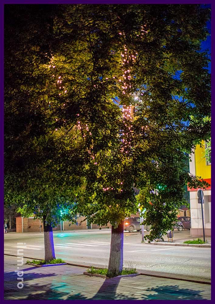 Украшение деревьев светодиодными гирляндами