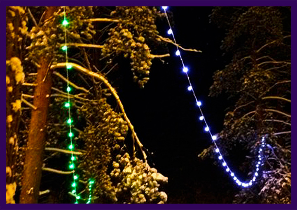 Освещение деревьев к Новому году