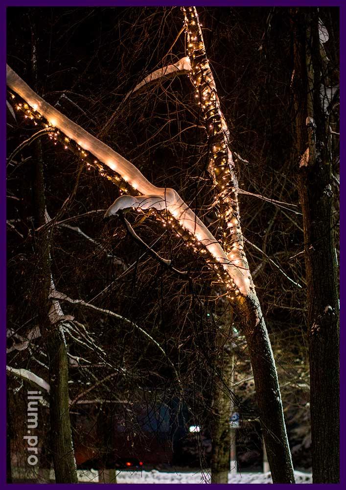 Тёплые оттенки гирлянд на деревьях