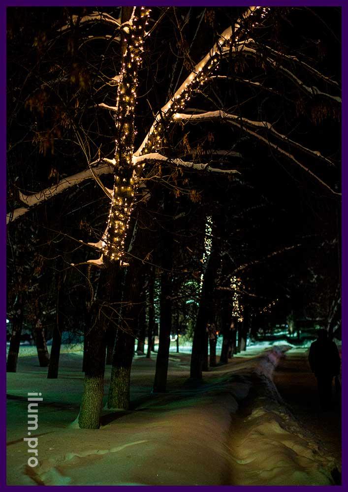 Дерево на Новый год