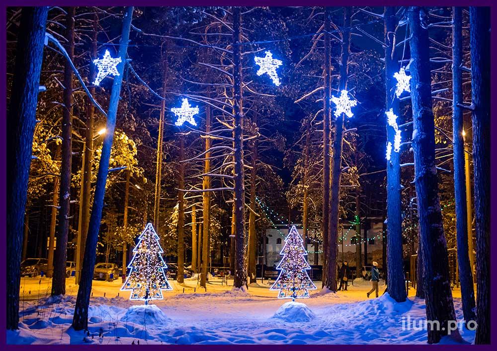 Фотосессия на лыжне. Новогодняя иллюминация и декор.