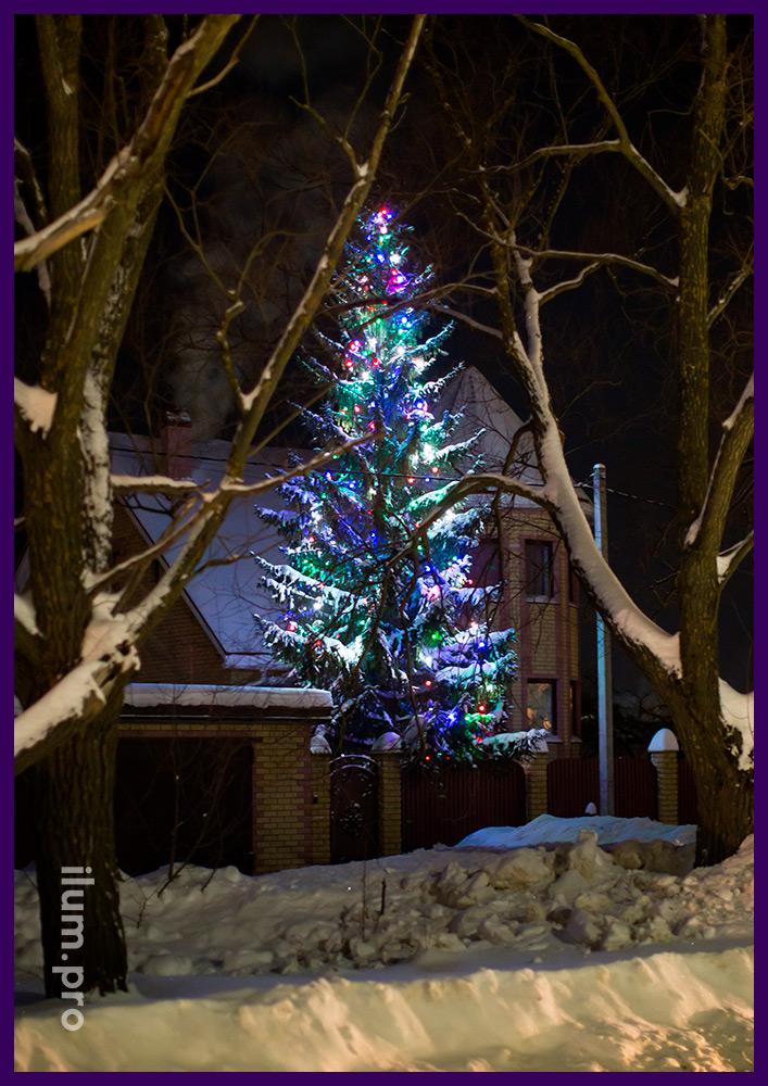 Белтлайт разноцветный светодиодный на живой ёлке во дворе дома во Владимирской области