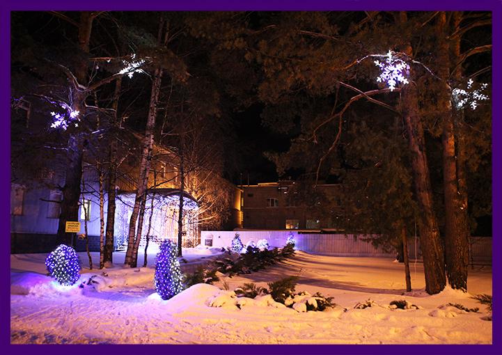 Светодиодная подсветка сосен гирляндами и снежинками