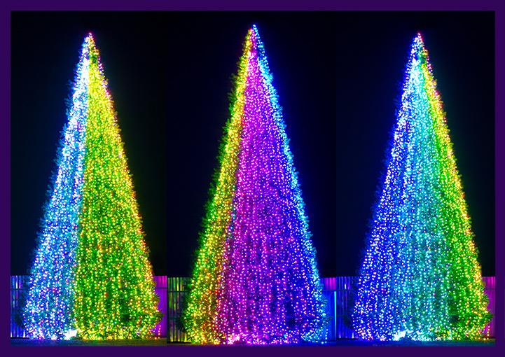 Подсветка высокой уличной ёлки гирляндами