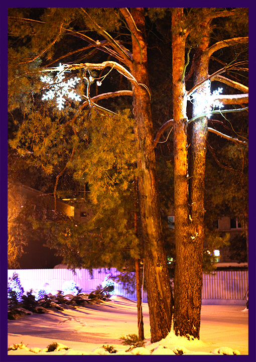Светодиодные снежинки на соснах на Новый год