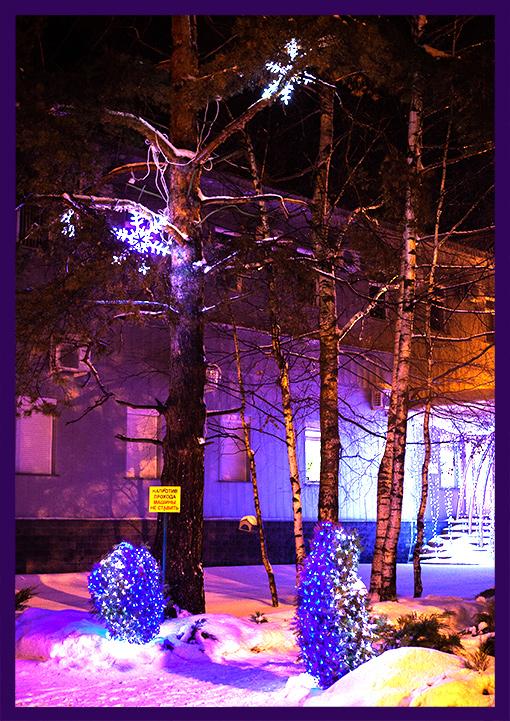 Новогодние украшения на деревьях и кустарниках