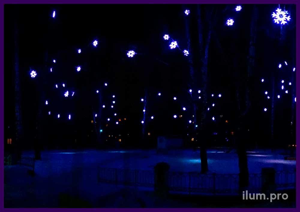 Светодиодные звёзды на деревьях на новогодние праздники
