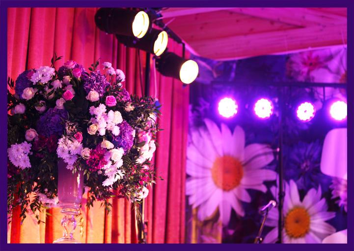 Светодиодное освещение мероприятия цветными прожекторами