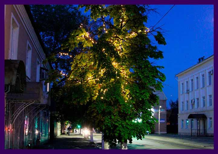 Подсветка деревьев летом гирляндами