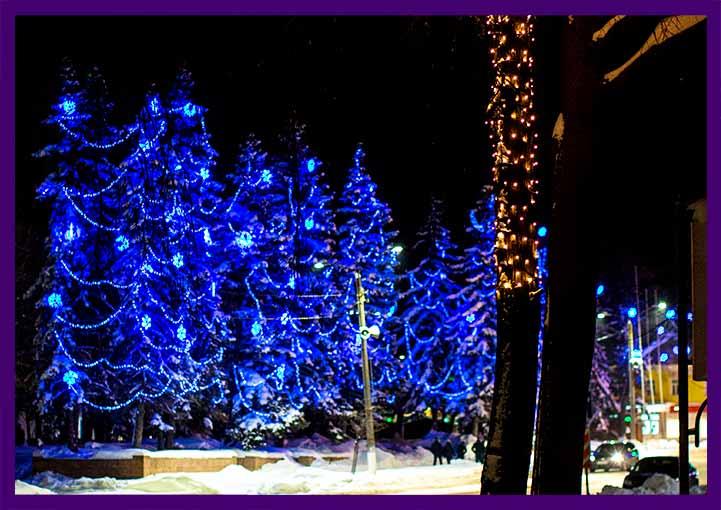 Новогодняя подсветка деревьев гирляндами