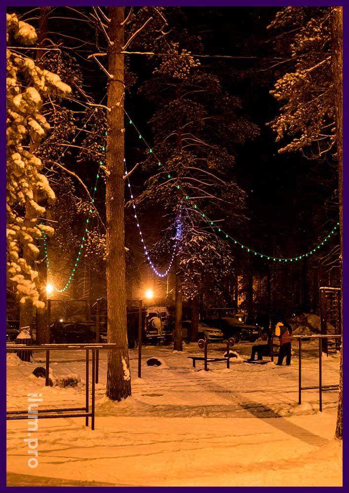 Светодиодный белтлайт на деревьях в парке