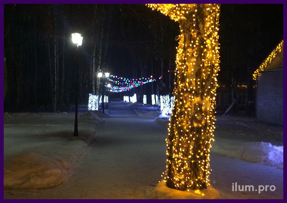 Подсветка стволов деревьев и дорожки в парке гирляндами