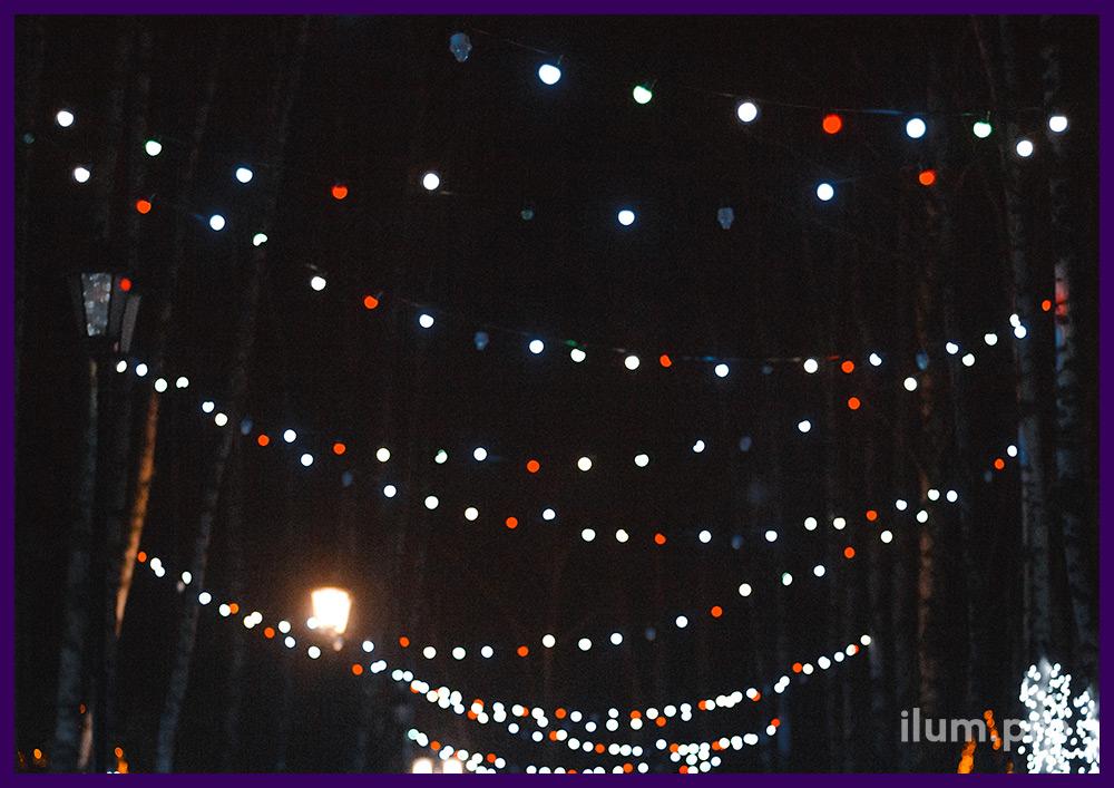 Украшение светодиодным белтлайтом разного цвета со стробоскопами парка