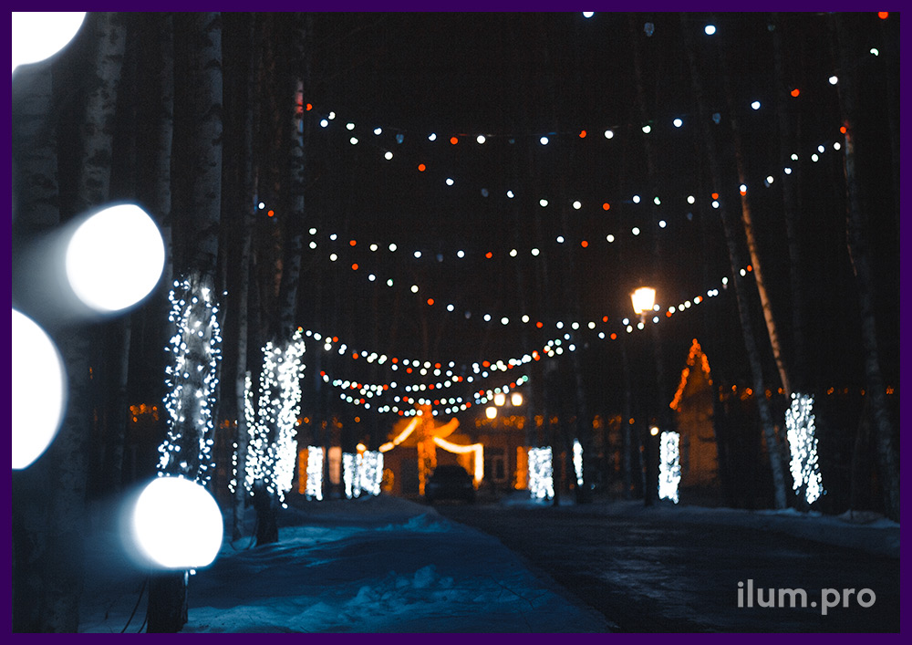 Новогодняя иллюминация в парке вдоль дорожек