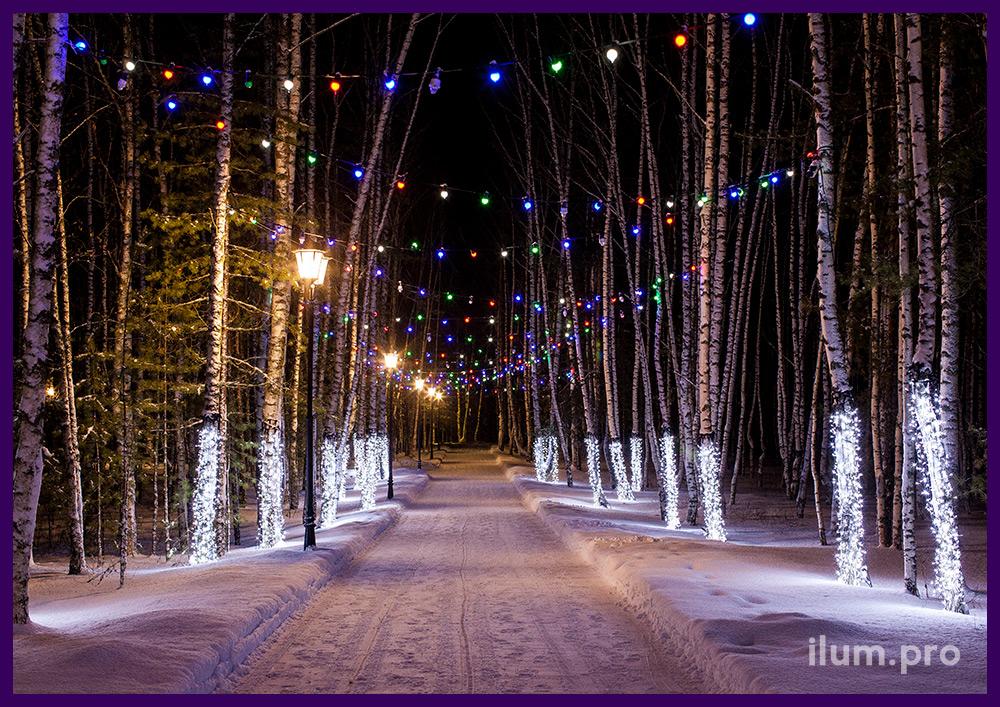 Подсветка гирляндами деревьев в лесу