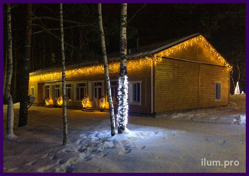 Подсветка здания и деревьев светодиодными гирляндами