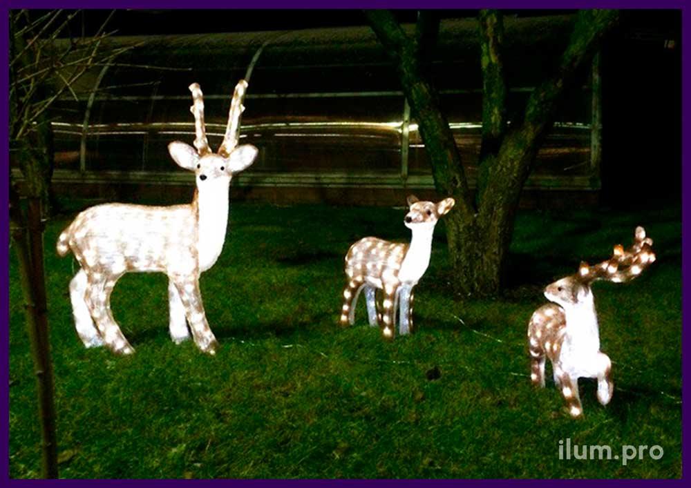 Световые фигуры оленей из акрила во дворе