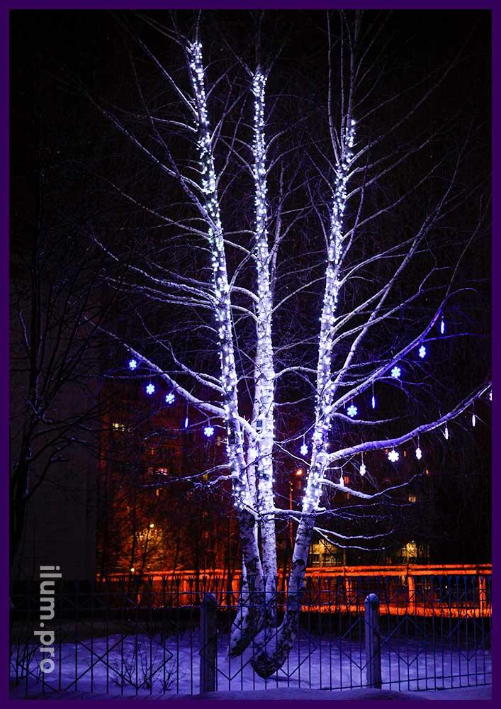 Светодиодные гирлянды на деревьях
