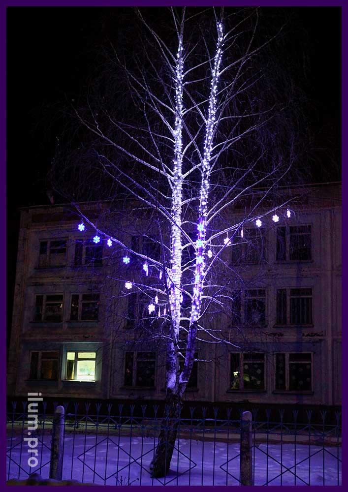 Берёзы со светодиодными гирляндами на праздники