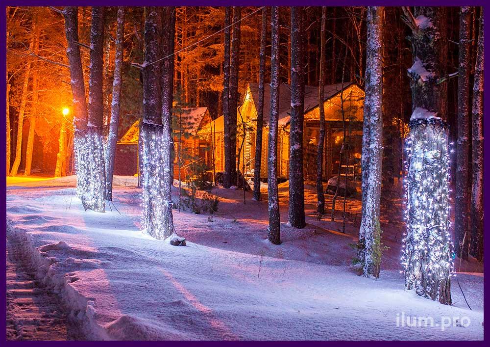 Новогоднее украшение деревьев светодиодными гирляндами и подсветка территории