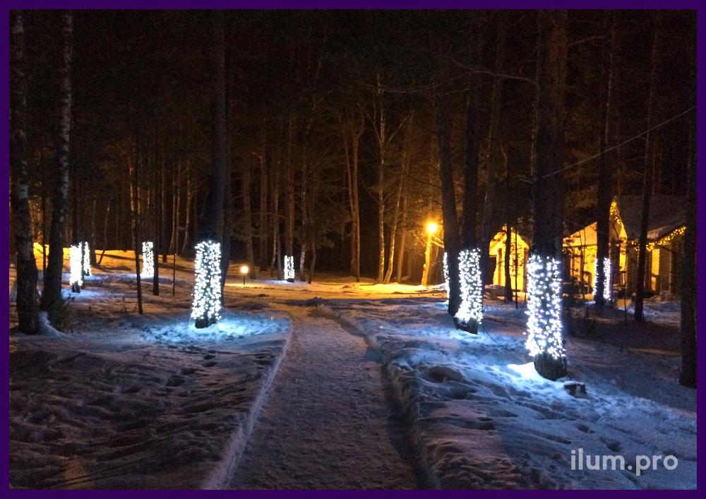 Стволы деревьев в светодиодных занавесах