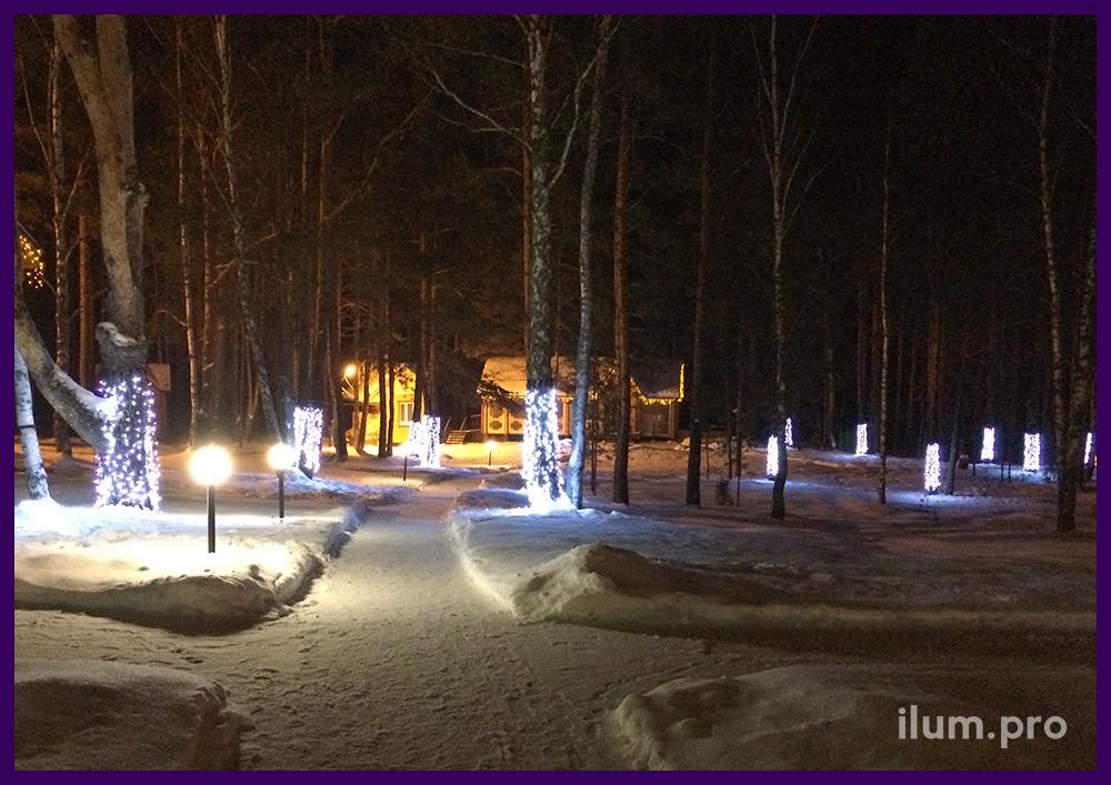 Новогоднее оформление стволов деревьев гирляндами