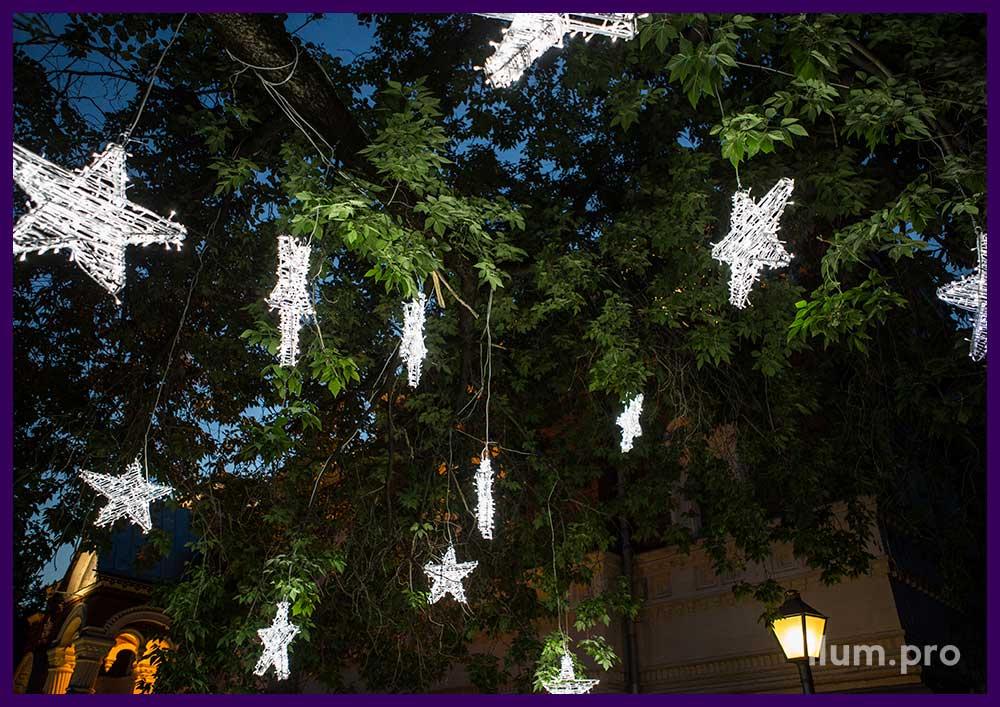 Украшение дерева в парке светодиодными звёздами из гирлянд