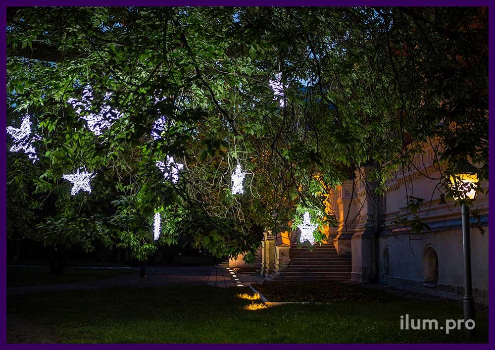 Звёзды с гирляндами летом на дереве