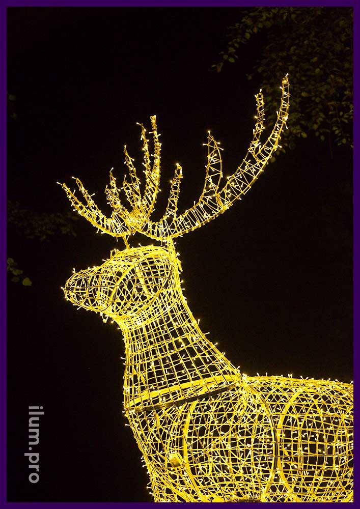 Новогоднее украшения парка, светодиодная иллюминация от производителя