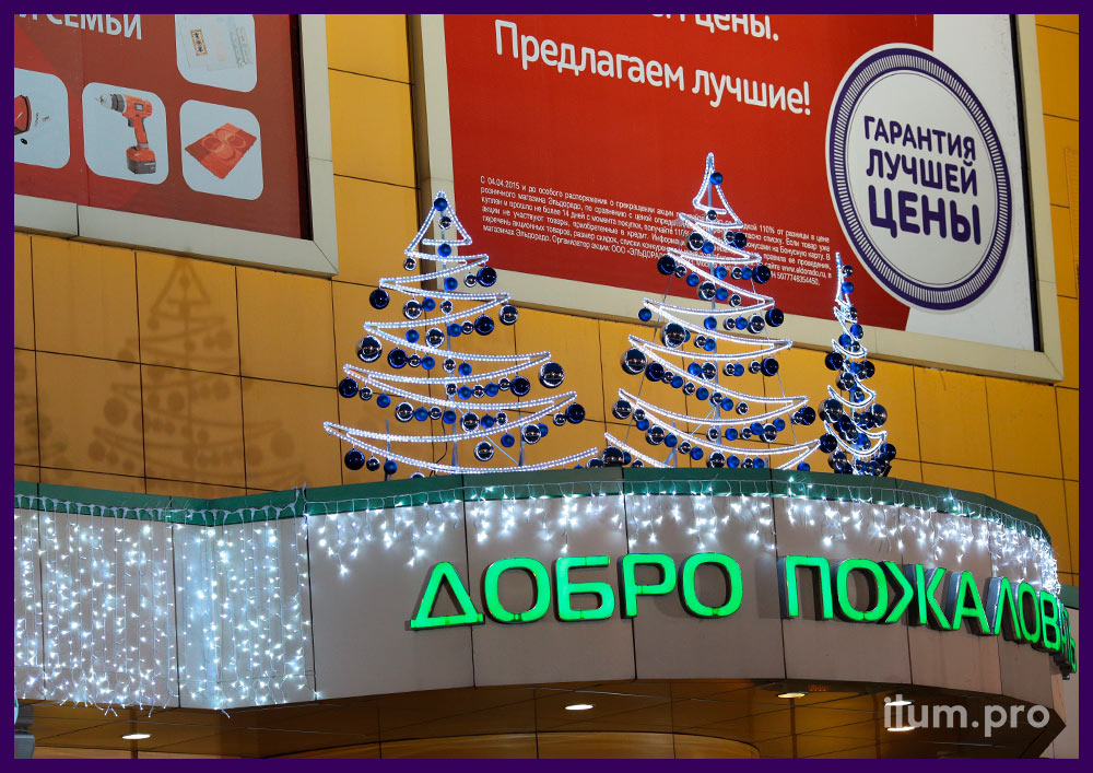 Светящееся украшения входа в ТЦ Максимир в Воронеже на Новый год
