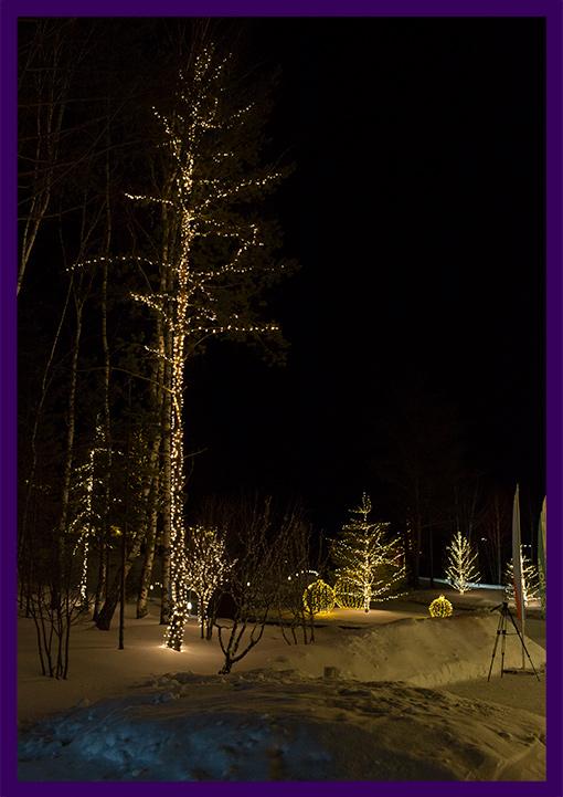 Новогоднее украшение деревьев гирляндами в Коврове