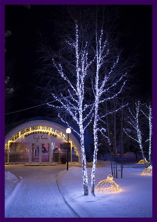 Новогоднее оформление гирляндами деревьев и окружающего пространства