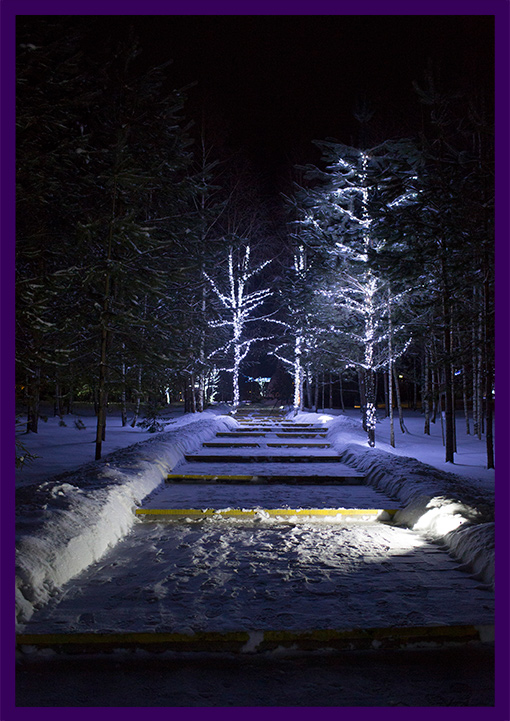 Новогодние гирлянды на деревьях в парке