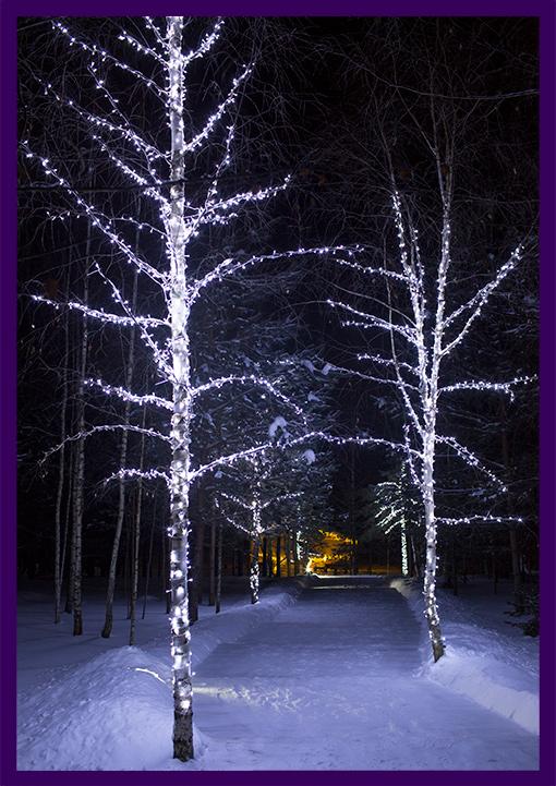 Белые гирлянды на берёзах в парке, подсветка крыши