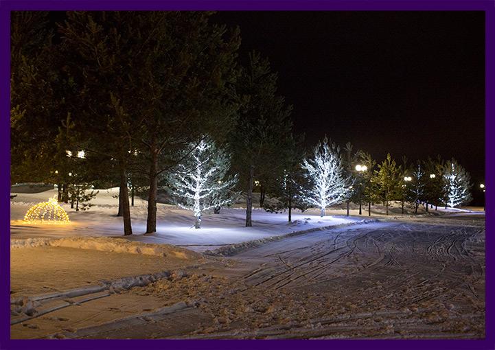 Деревья украшены светодиодными гирляндами
