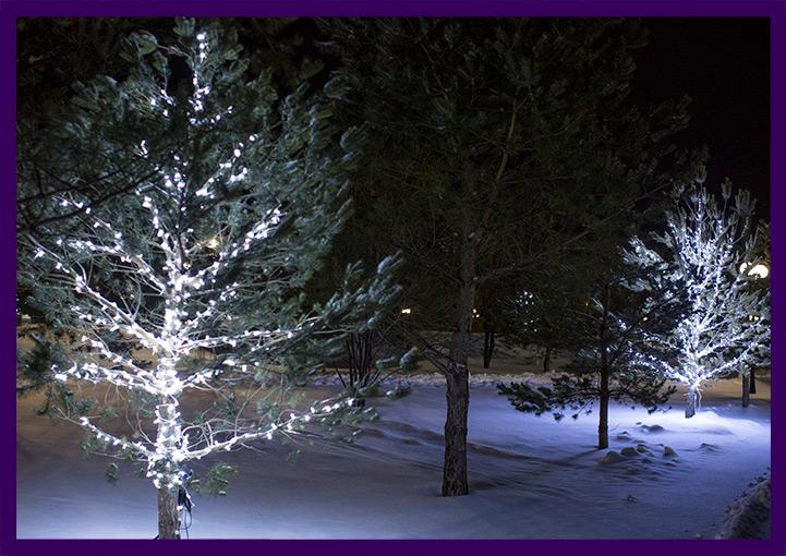 Новогоднее украшение деревьев гирляндами в парке