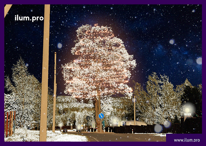 Подсветка дерева гирляндами - проект подсветки
