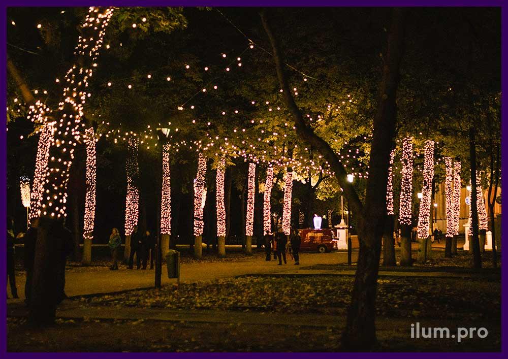 Светодиодная иллюминация на деревьях и над дорожкой