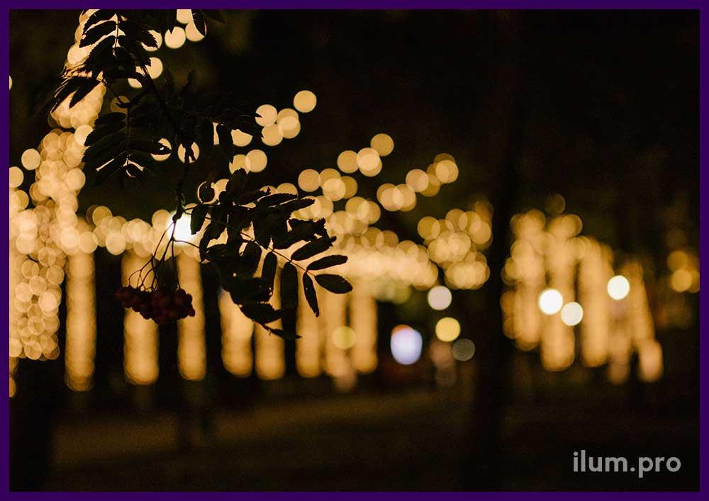 Украшение светодиодными гирляндами парка в Рязани