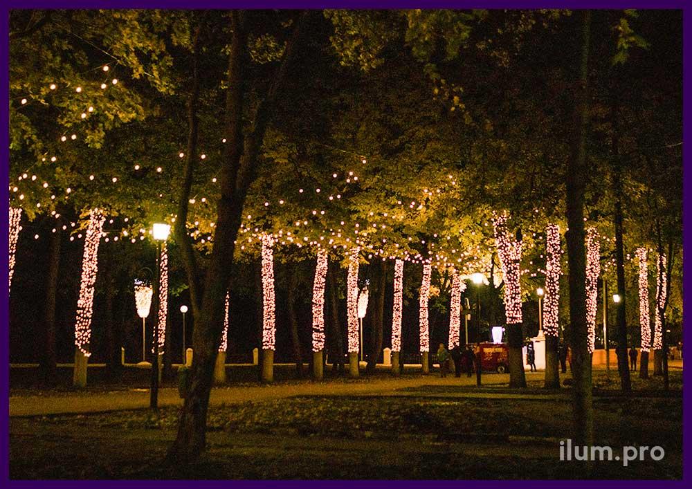 Светодиодная подсветка гирляндами парка в Рязани