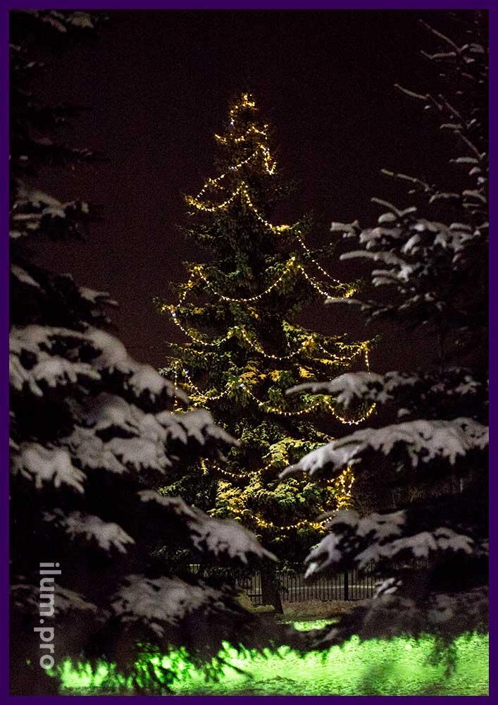 Новогоднее украшение живой ёлки гирляндами