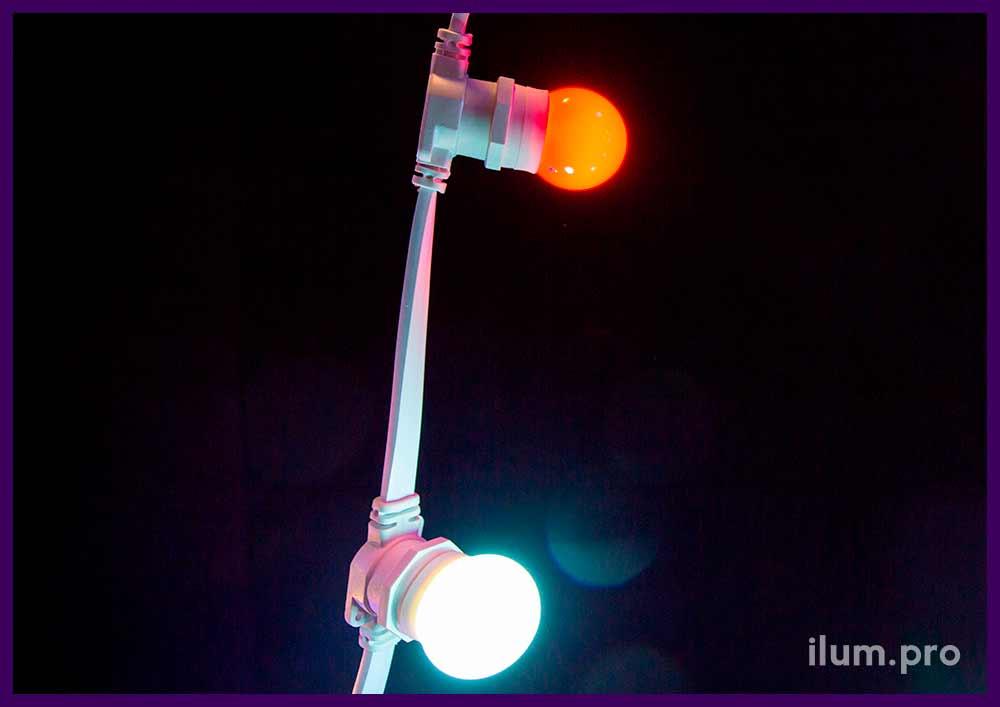 Светодиодные лампочки для ресторанов и кафе