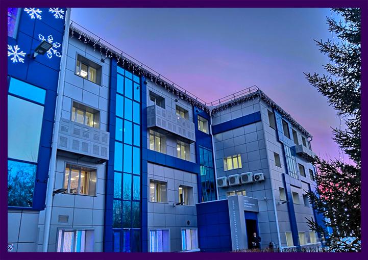 Новогодняя светодиодная иллюминация для фасада офиса Русгидро