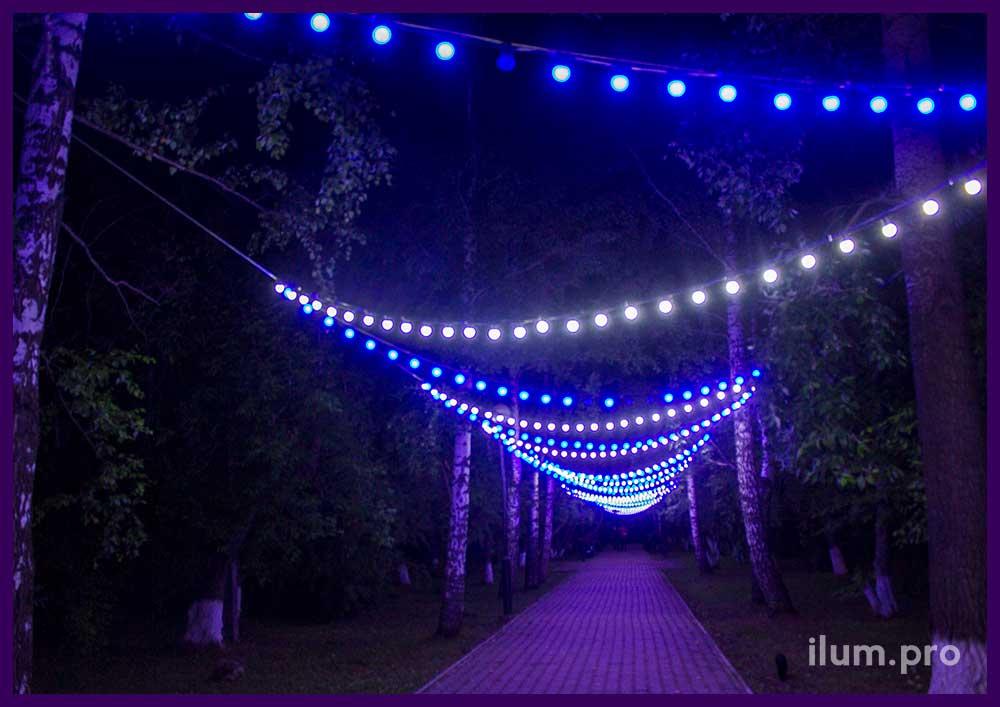 Подсветка парка светодиодными гирляндами с лампочками на тросах