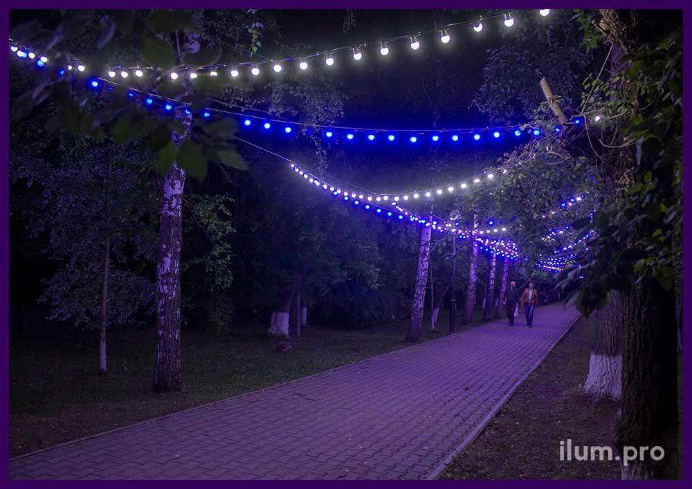 Подсветка дорожек в парке гирляндами белого и синего цвета
