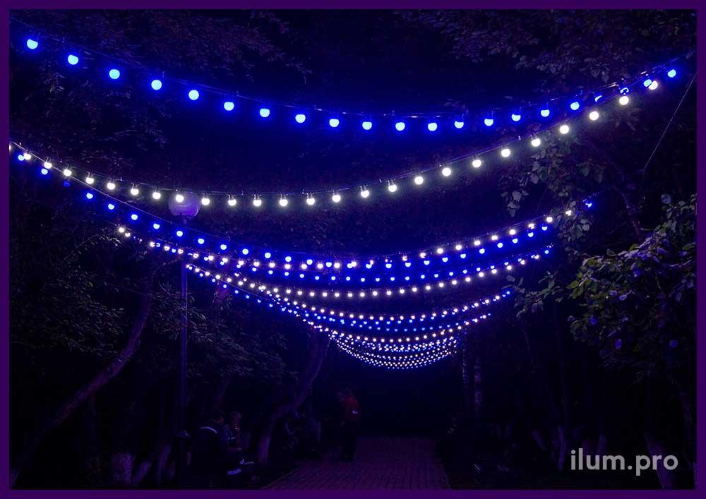 Светодиодные гирлянды белого и синего цвета с крупными лампочками в парке