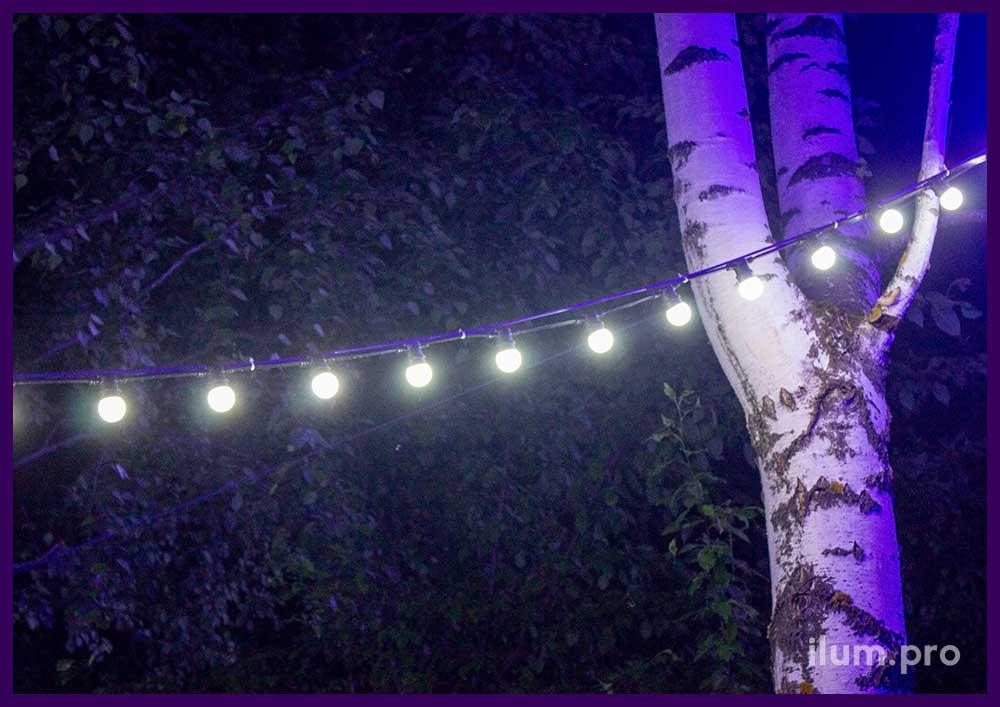 Гирлянды белые светодиодные с крупными лампочками 3,5 см