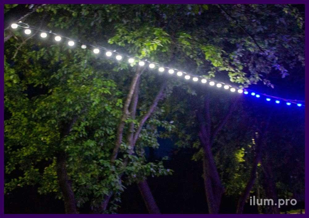 Светодиодный белтлайт белого и синего цвета в парке Пермского края