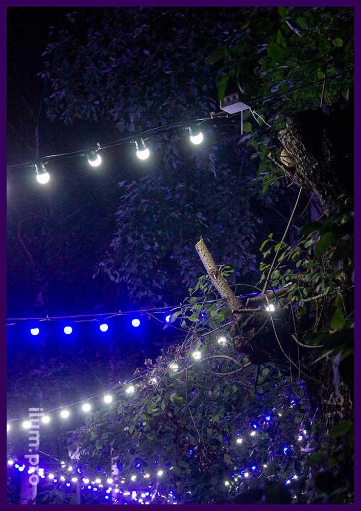 Лампочки белтлайт на гирлянде между деревьями в парке села Орда